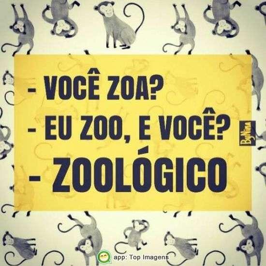Zoo lógico