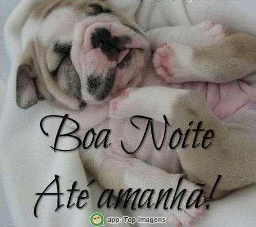 Boa noite até amanhã