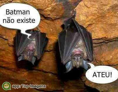 Morcego ateu