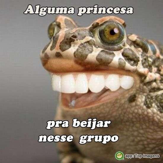 Princesa no grupo