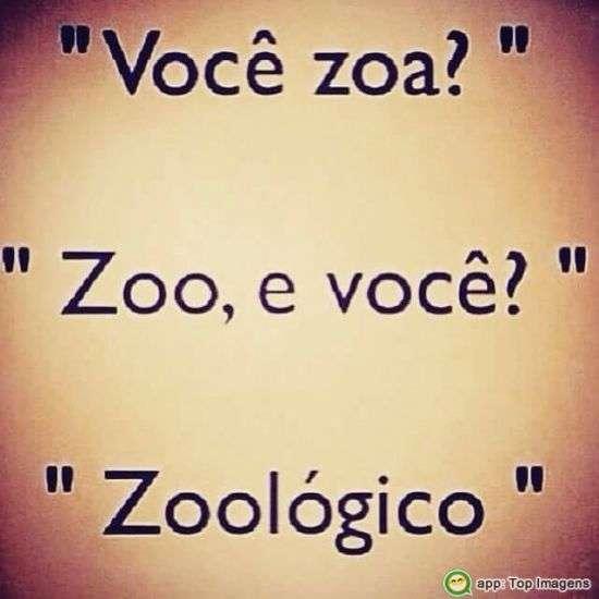 Zoo muito