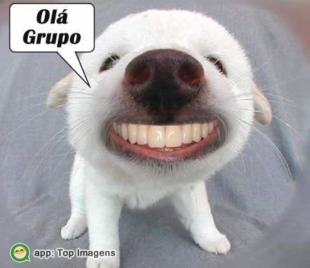 Olá grupo
