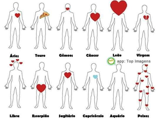 Amor dos signos