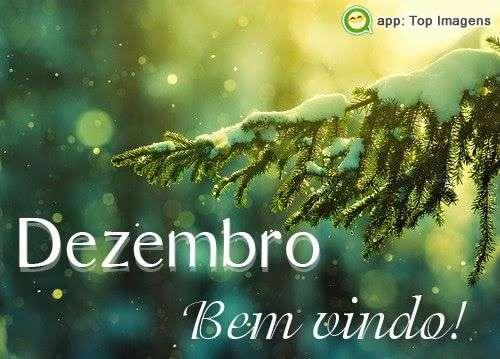 Bem-vindo dezembro