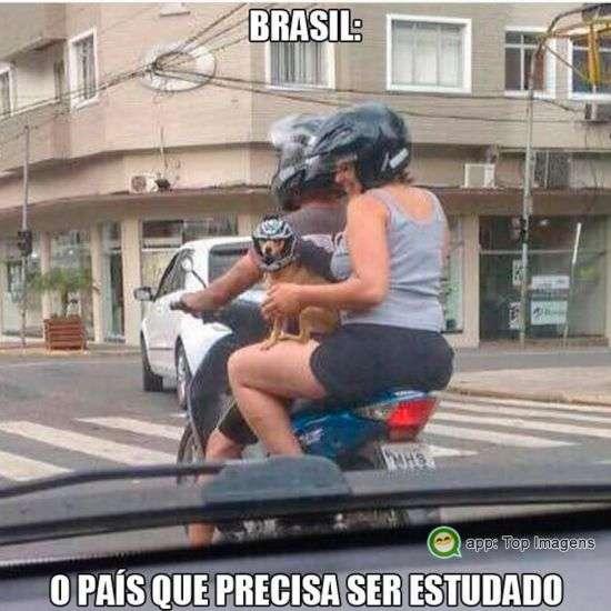 Brasileiro precisa ser estudado