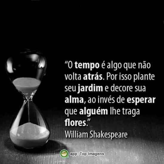 O tempo não volta