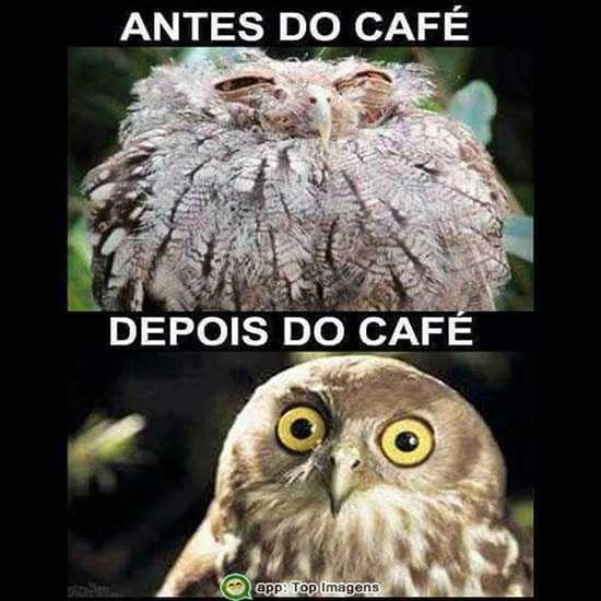 Antes e depois do café