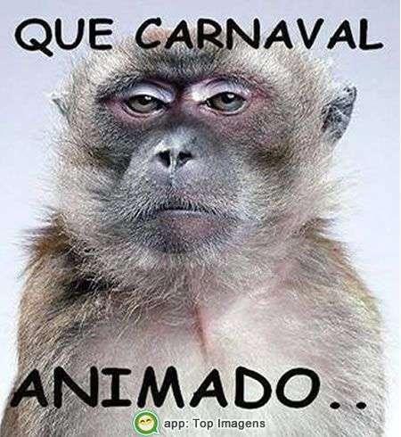 Carnaval animado