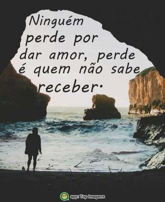 Ninguém perde por dar amor