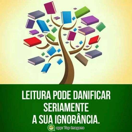 Leitura pode danificar sua ignorância