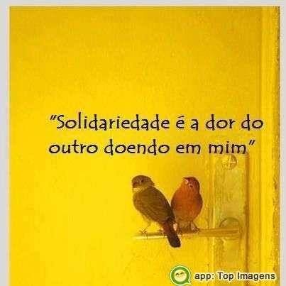 Solidariedade é a dor do outro em mim