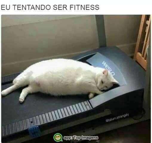 Eu tentando ser fitness