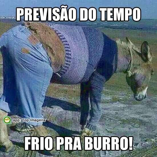 Frio pra burro