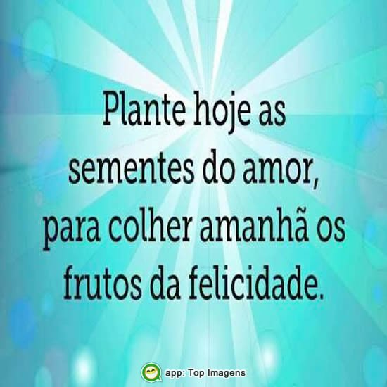Plante as sementes do amor
