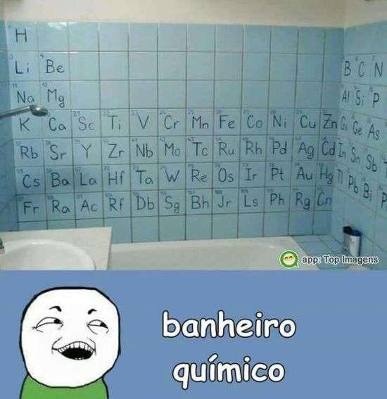 Banheiro químico