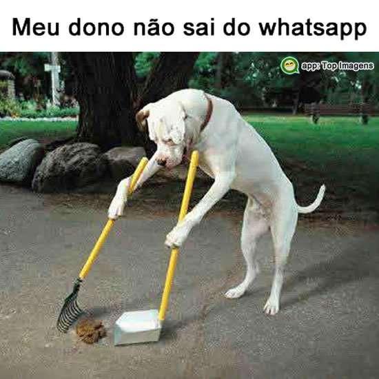 Não sai do whatsapp