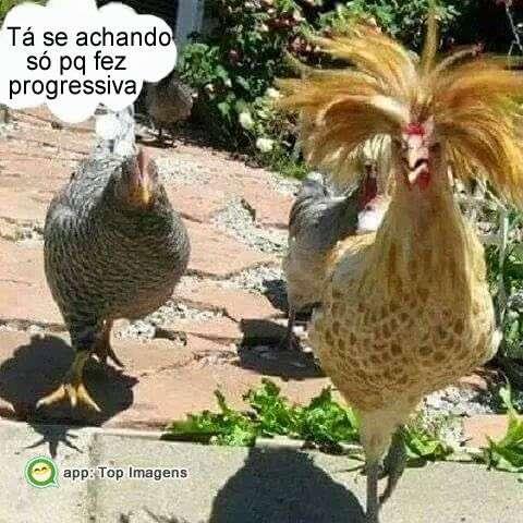 Amigo com progressiva