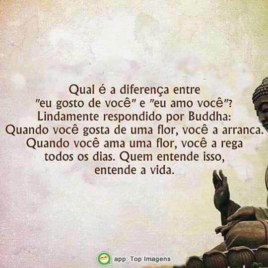 Diferença entre gostar e amar
