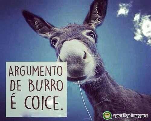 Argumento de burro