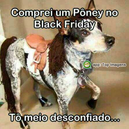 Compra na black friday