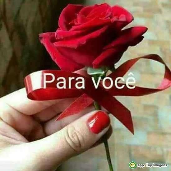 Rosa pra você
