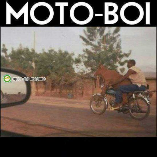 Moto-boi