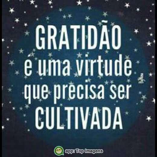 Gratidão é uma virtude