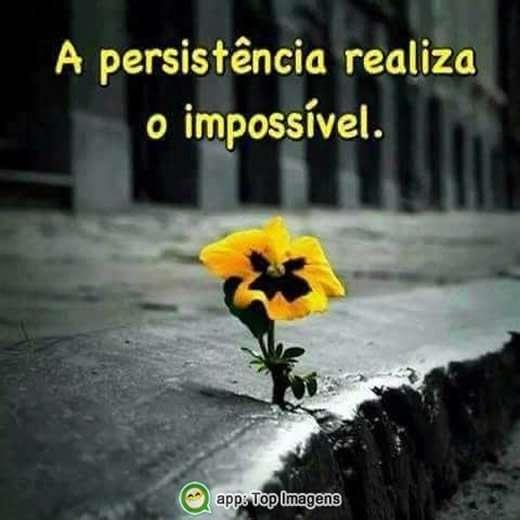 A persistência