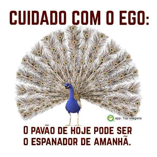 Cuidado com o ego