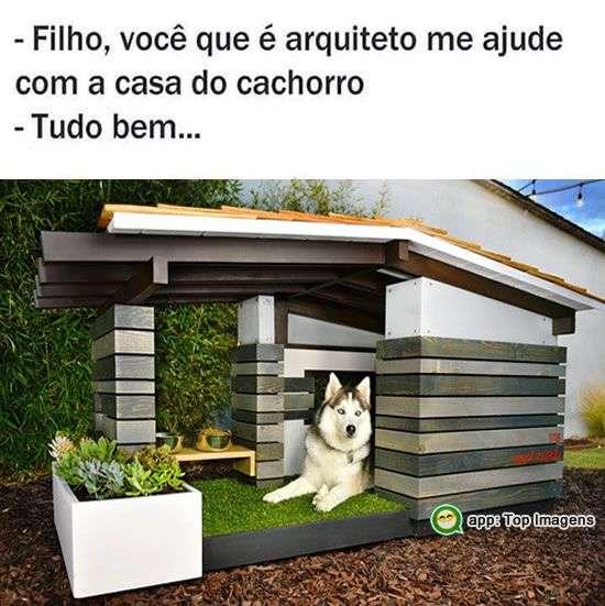 Casa do cachorro