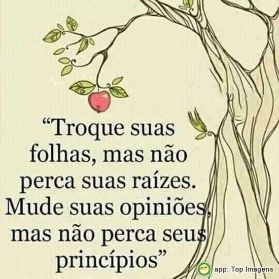 Não perca seus princípios