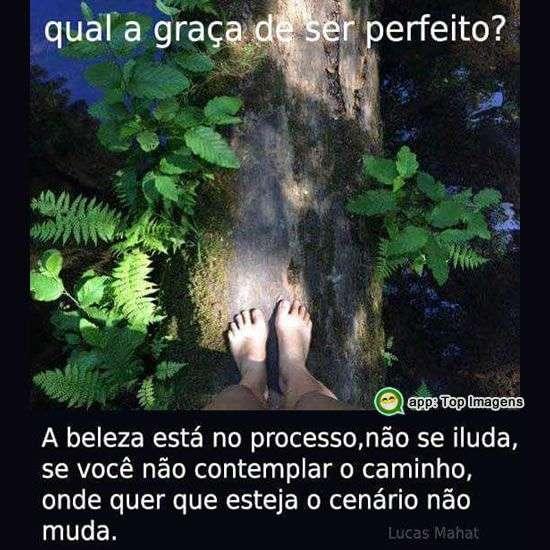 Ser perfeito