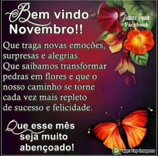 Bem-vindo Novembro