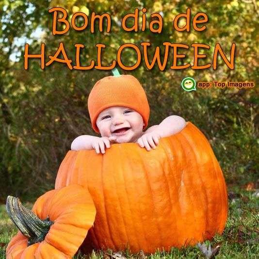 Bom dia de halloween