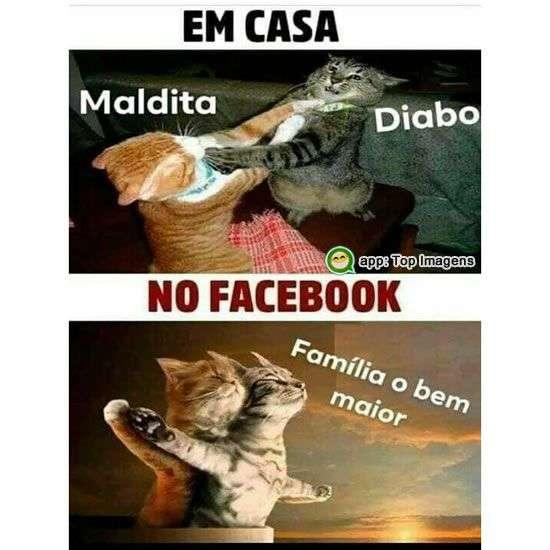 Em casa e no facebook