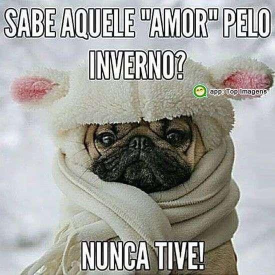 Amor pelo inverno