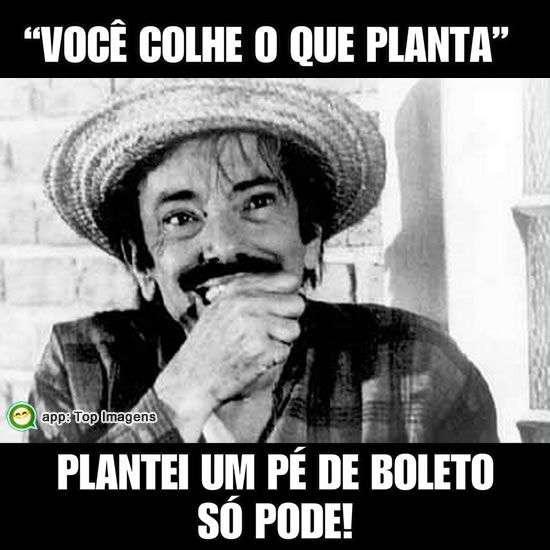 Você colhe o que planta