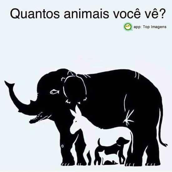 Quantos animais você vê