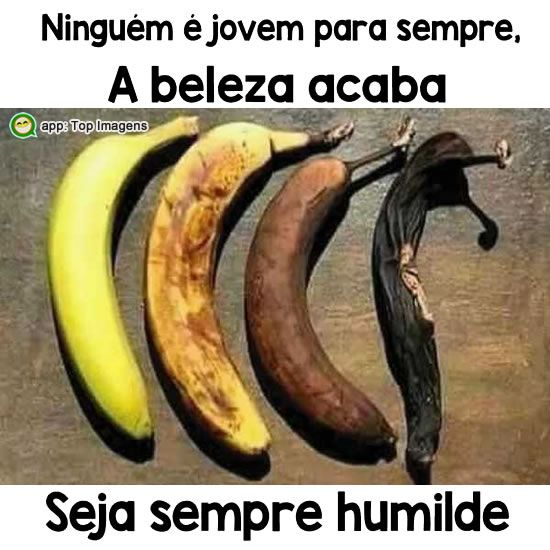 Seja sempre humilde