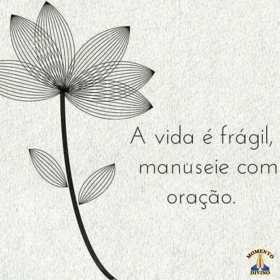 A vida é frágil