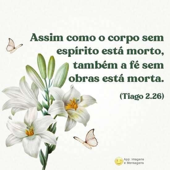 Tiago 2:26